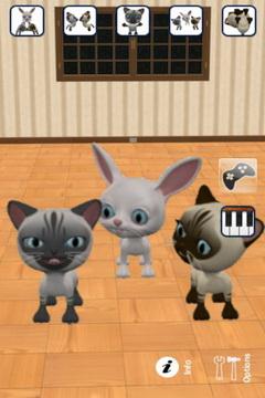 会说话的三只小猫截图1