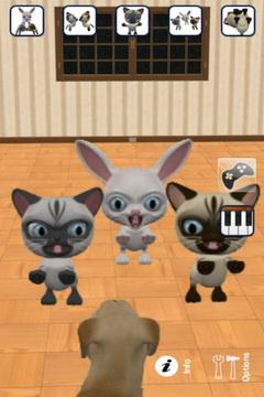 会说话的三只小猫截图3