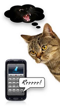 人猫交流器电脑版截图4