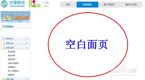 中国移动网上营业厅通话记录查询方法