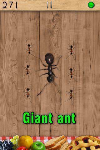 打蚂蚁电脑版截图4