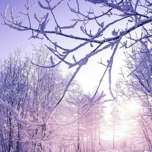 唯美的雪景微信头像