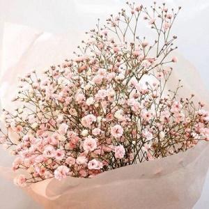 花束唯美风景微信头像2图片