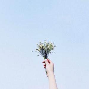 花束唯美风景微信头像11