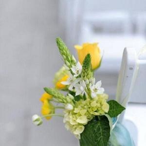 花儿如此多娇风景微信头像17