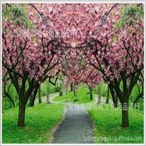 满树开花唯美风景头像-微信头像