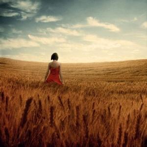 麦田里的女孩背影风景头像-微信头像