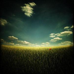 优美意境大自然风景头像-微信头像