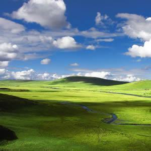 绿色大草原自然风景头像