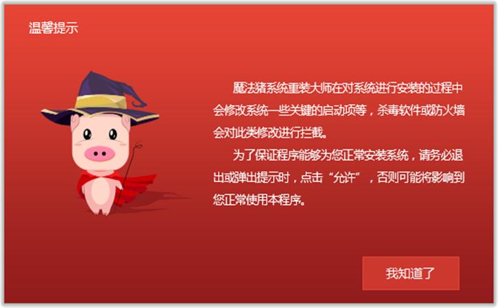 魔法猪系统重装大师截图1
