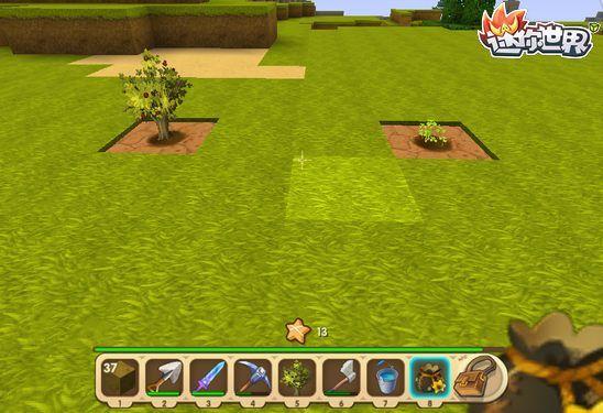 迷你世界怎样种树 树苗花种怎么用
