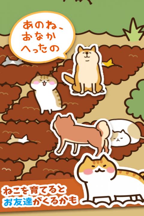 猫咪田园截图1
