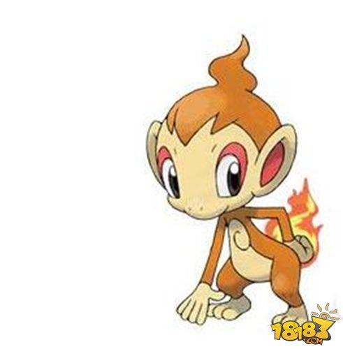 小火焰猴背面的火焰而由燃烧胃内的气体而产生的.