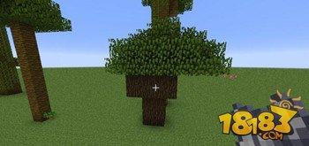 我的世界丛林木与深色橡木种植攻略