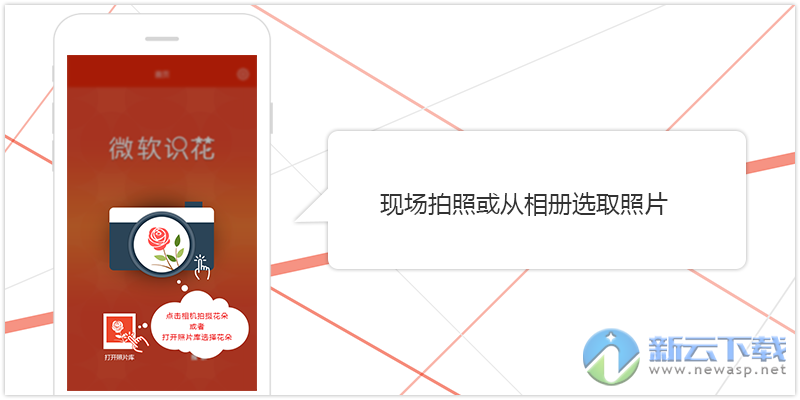 微软识花App怎么用 微软识花使用方法教程