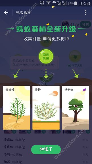 蚂蚁森林种植沙柳方法介绍[多图]图片1