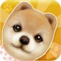 心动小狗app icon图