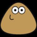 我的宠物pou电脑版icon图