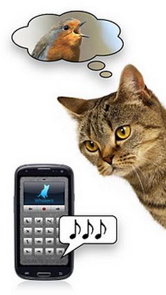 人猫交流器电脑版截图1