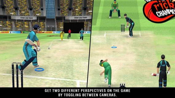 世界板球锦标赛2电脑版截图4