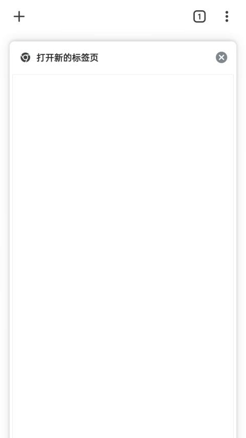 谷歌浏览器截图3