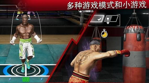 真实拳击2电脑版截图4