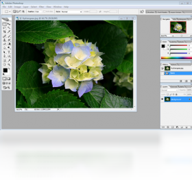 Adobe PhotoShop 9截图1