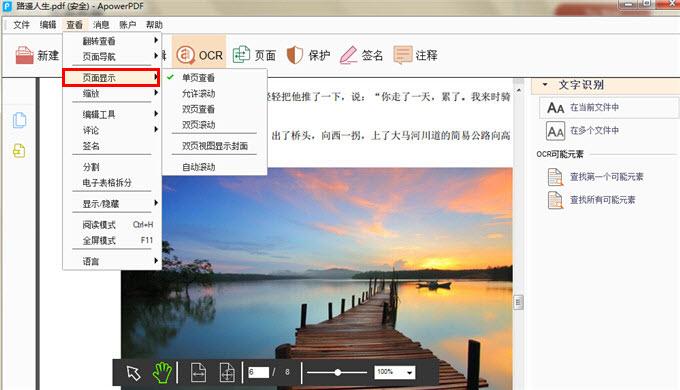 Apowersoft PDF转换王截图1
