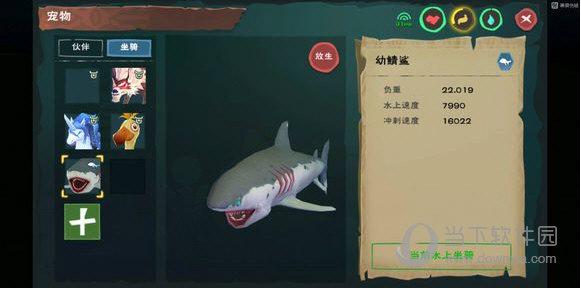 创造与魔法幼鲸鲨坐骑