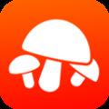 菌窝子app app icon图