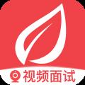 香草招聘app icon图
