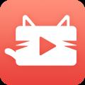 猫咪交友app icon图