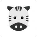 斑马西西app icon图
